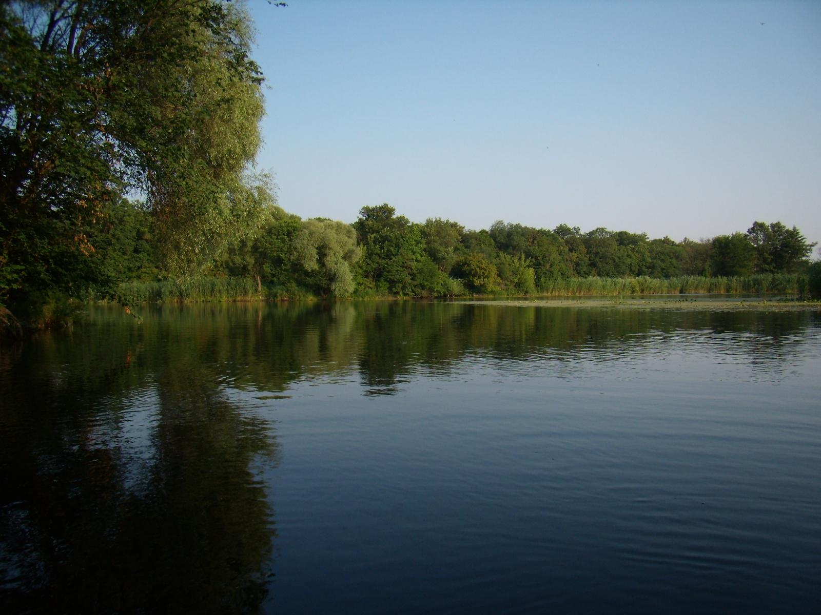 Тело без вести пропавшей пенсионерки нашли на берегу реки